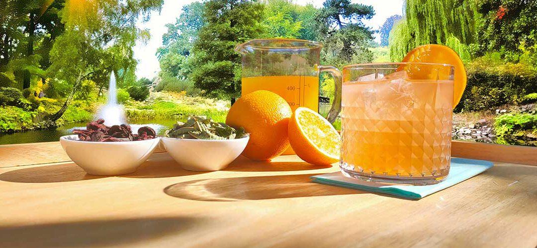 SWEET HIBISCUS & VERVEINE ICED TEA RECEPT